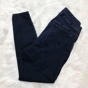 Torrid V Davis High Waisted Skinny Jeans